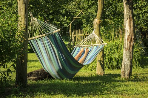 How to make your house and garden more tranquil – tips from an acoustics expert