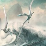 Pterosaurs increased their flight efficiency over time – new evidence for long-term evolution