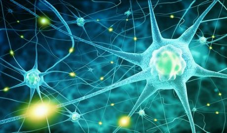 Multiple sclerosis: some patients may already hold the key to protecting the brain against viruses
