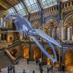 Holographic history is making 'Night at the Museum' a reality